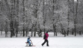 Вильфанд пообещал зимний февраль в европейской России