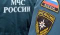 На юге Москвы из шахты лифта спасли кошку