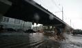 Более 50 деревьев упали в Москве и Подмосковье из-за непогоды 3 июля