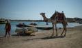 Как попасть в Египет: почему российских туристов там мало