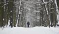 Гидрометцентр предупредил о понижении температуры в Европейской России