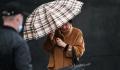 В Москве и области объявили желтый уровень погодной опасности